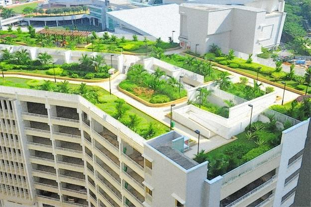 Echo Of The Past Latest Trends In Green Building Of Roof Gardens