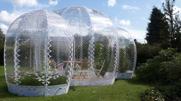 miniature garden in transparent dome