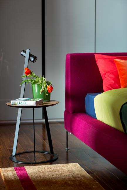 colorful modern interior design and inspiring rich decor color