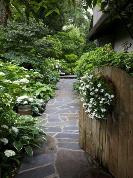 yard landscaping and backyard designs