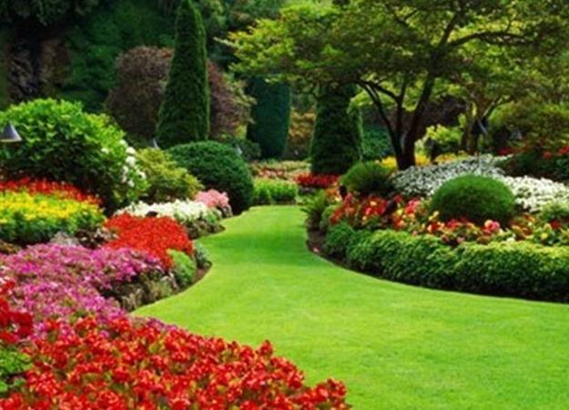 Beautiful Garden Design, Optical Illusions Balancing Yard ... on Beautiful Backyard Landscaping Ideas id=82015