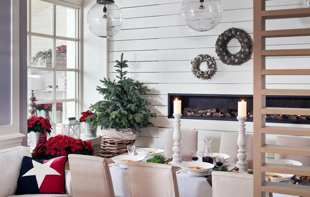 Live Christmas Trees For Eco Friendly Holiday Decor, Green