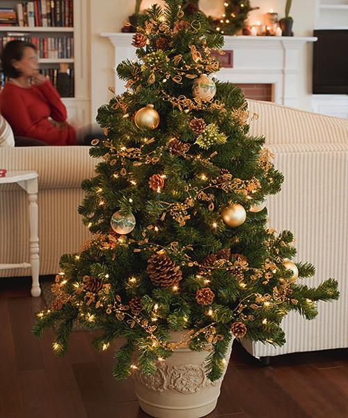eco friendly holiday decor ideas small potted christmas tree with pine cones lights and christmas balls live trunks