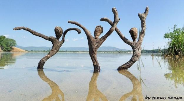 driftwood art inspirations for creative sculptures and