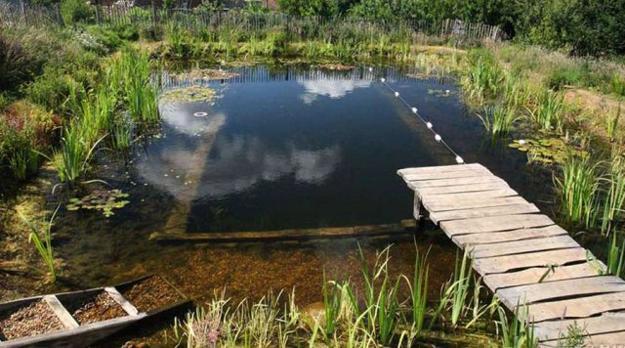 Chlorine Free Natural Swimming Pools Healthy And Eco