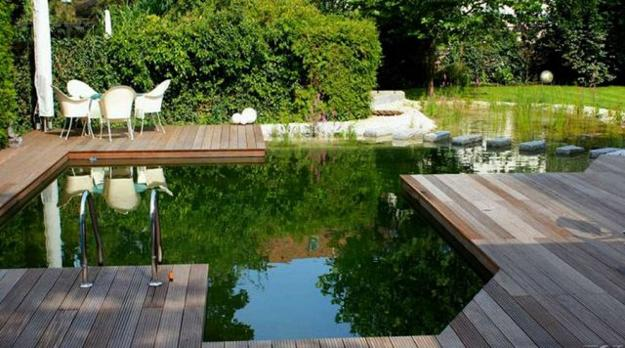 Chlorine Free Natural Swimming Pools Healthy And Eco Friendly Backyard Ideas