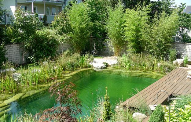 Beautiful Yard Landscaping With Natural Swimming Pool, Green Ideas For  Backyard Designs