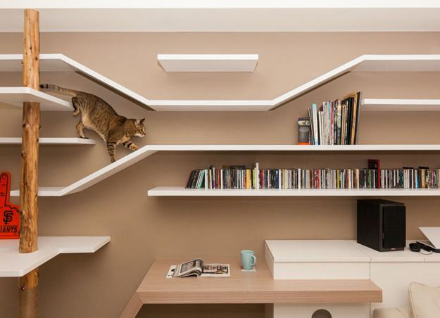Shelving Ideaodern Interior Design For Pets