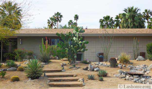 desert landscaping ideas to save water and create low maintenance gardens