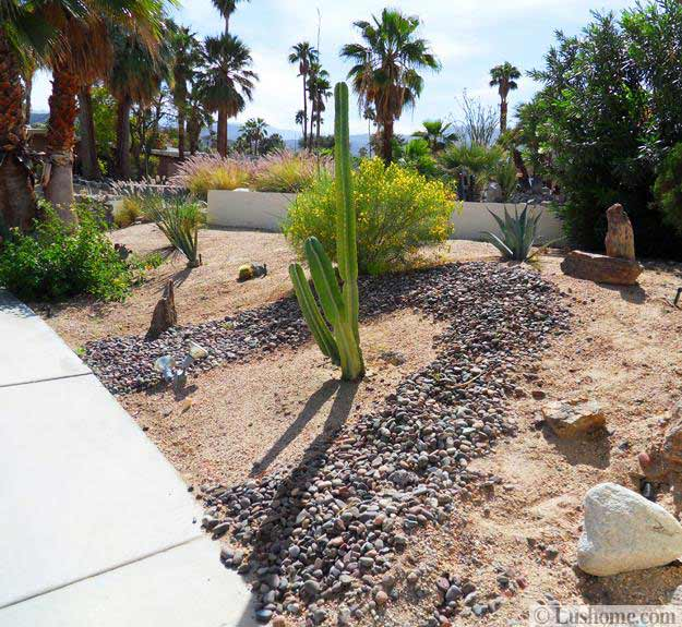 Desert Landscaping Ideas To Save Water And Create Low