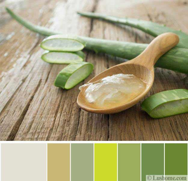 natural green color schemes for modern bedroom and Modern Teal Bedroom Color Schemes Interior Decorating Color Schemes