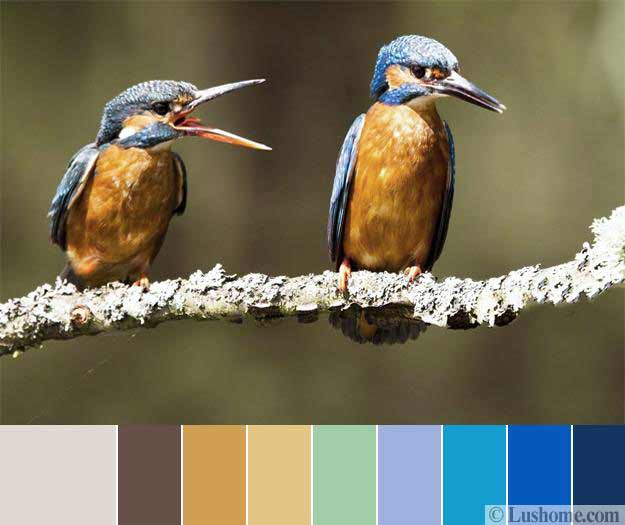 Interior Design In Natural Colors Nature Inspired Color Combination With Blue Tones And Warm Brown Shades