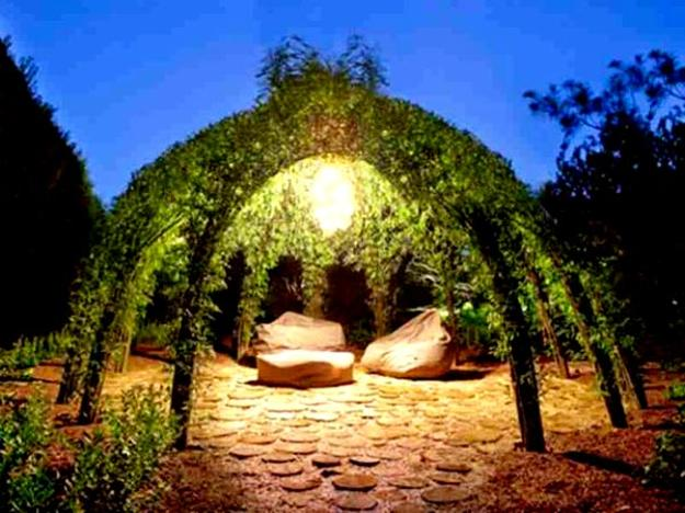 growing plants for live gazebo designs