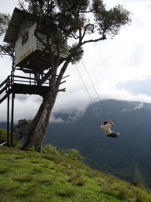 Breathtaking swing and tree house