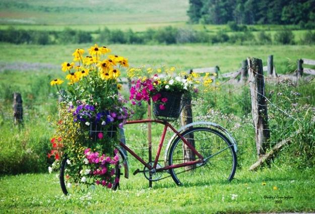 diy bike and flowers garden decorations