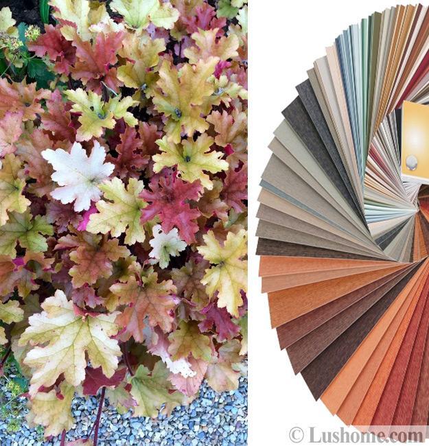 room color combinations