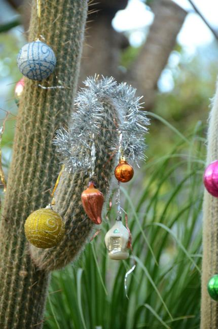 Cacti Adding Desert Vibe To Alternative Christmas Tree