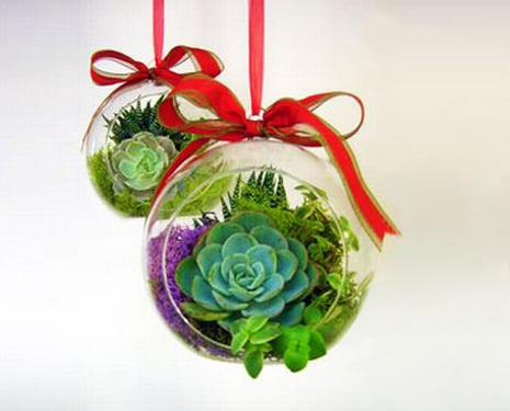 Christmas Succulent Centerpieces.Traditional Christmas Decorations Beautifully Transformed