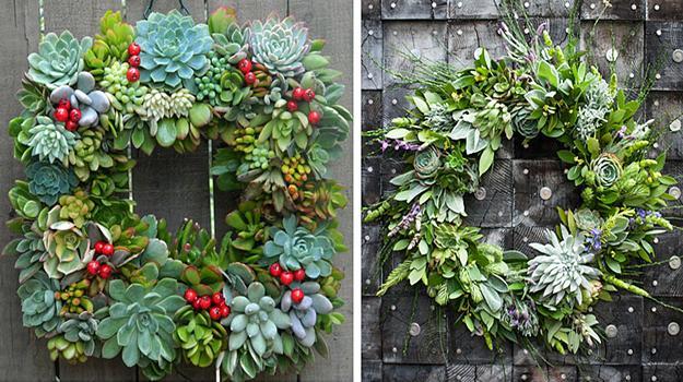 Christmas Succulent Decor.20 Stylish Ideas For Live Succulent Wreaths Accentuating