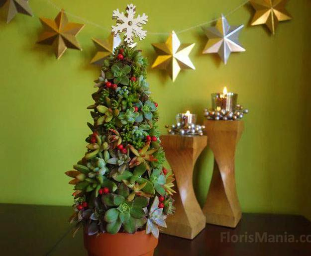 Golden Star Decorations Candles Miniature Christmas Tree Design With Live Plants