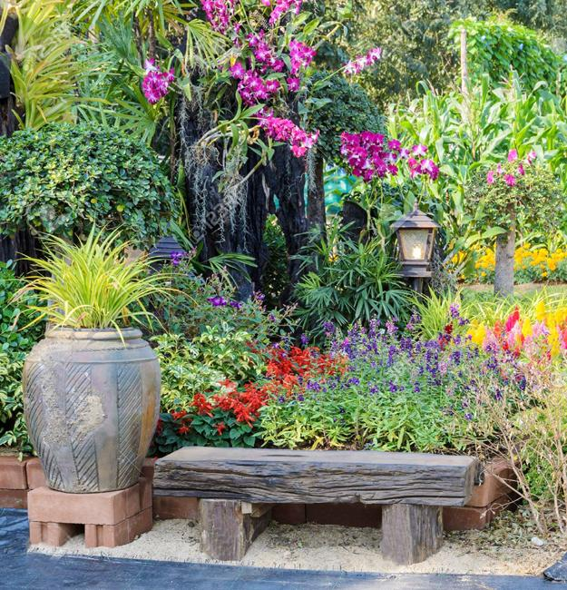 Lilies, Beautiful Flowering Plants For No Stress Garden Design
