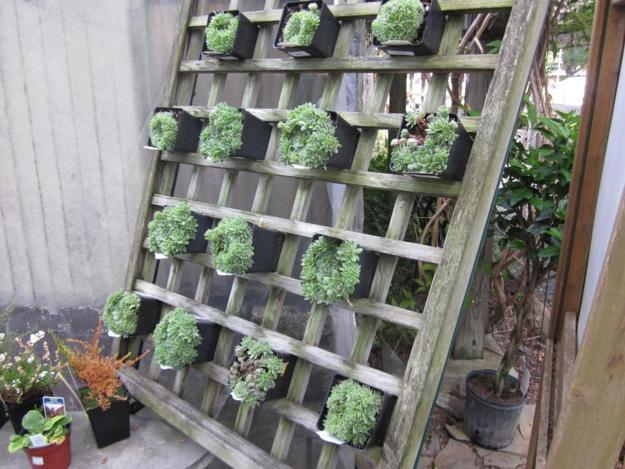 Vertical Garden Designs Space Saving Ideas For Small