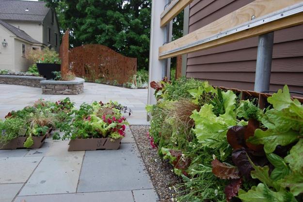 Vertical Garden Designs Space Saving Ideas For Small