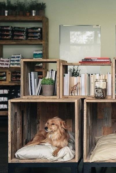 recycling wood bozes for pet beds