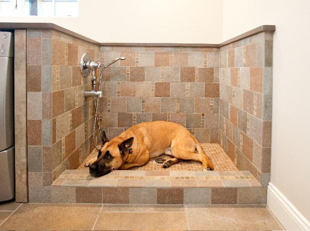 Luxury Dog Wash Tubs Stock Of Bathtub Decor