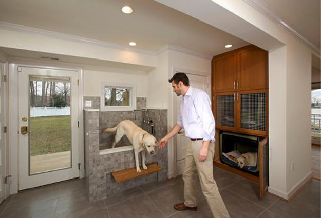 Mudroom Designs with Dog Showers, Modern Ideas, DIY Inspirations