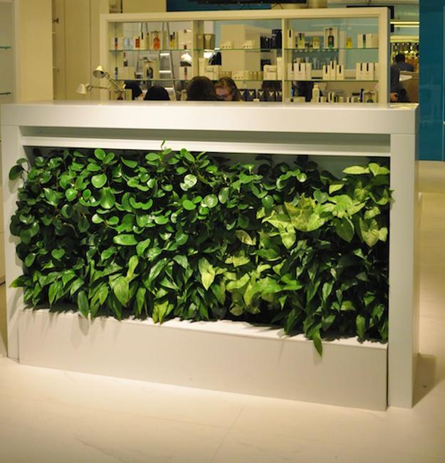 Ultra Green Modern House Design With Japanese Vibe In: Vertical Garden Design Ideas, Green Wall Decorations For