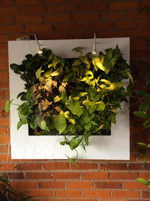 decorative wall panels with indoor plants