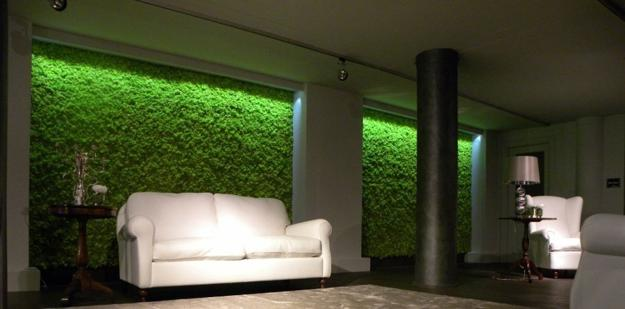 Benefits Of Accent Wall Design With Moss Stunning Green