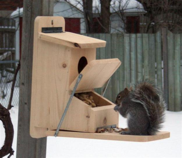 DIY Yard Decorations, Squirrel House Designs To Build And