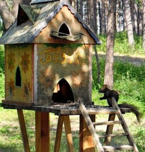 Diy Yard Decorations Squirrel House Designs To Build And