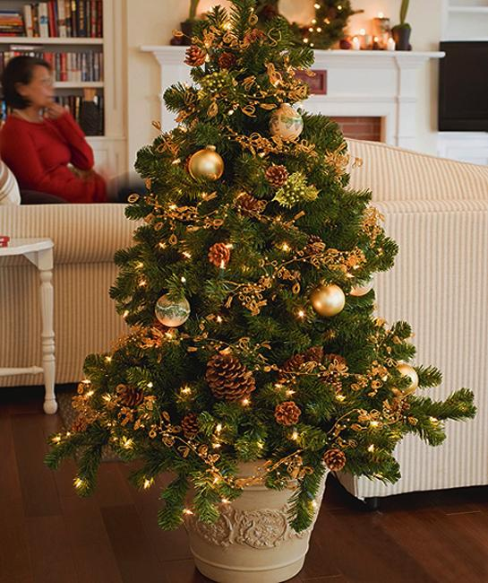 Small Christmas Trees, Money And Space Saving Ideas For