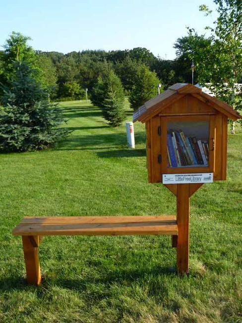 garden bench and little library