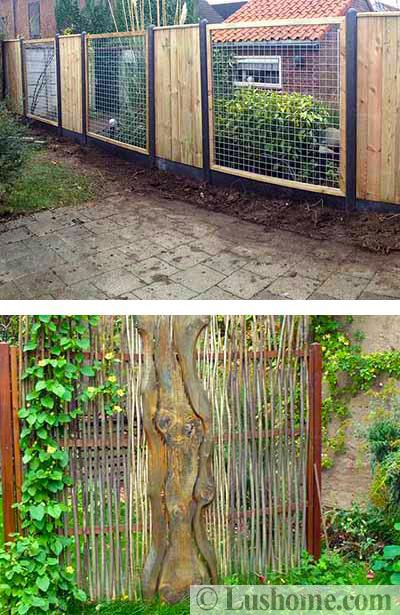 Beautiful Fences Design Ideas And
