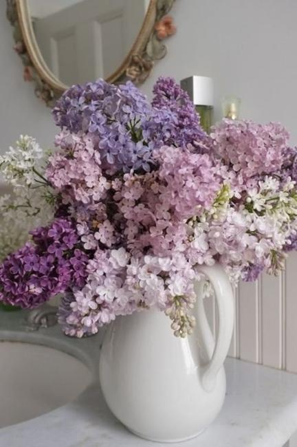 Interesting Facts About Lilac Flower Arrangements And