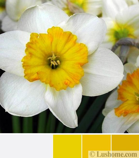 Sunny Yellow And White Decorating Ideas Inspired By Spring