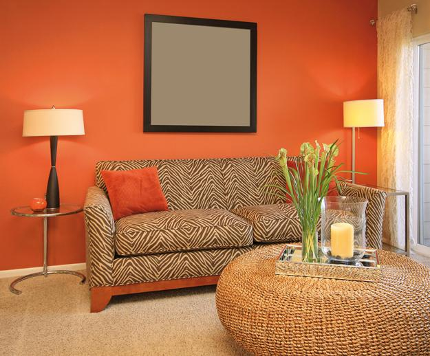 Tender And Bright Orange Pink Color Shades Creating Warm