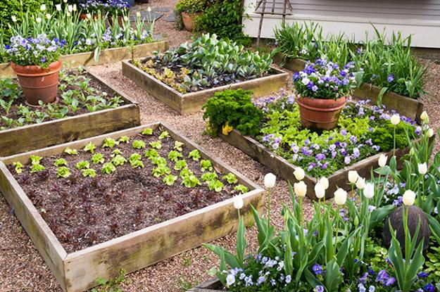 Original Herb Garden Design, Beautiful Yard Landscaping Ideas