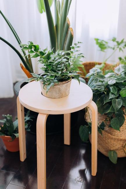 wooden stool plant holder