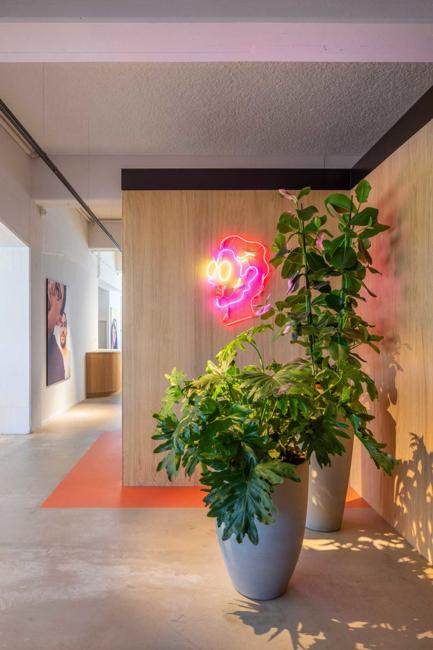 green indoor plants and neon wall decoration