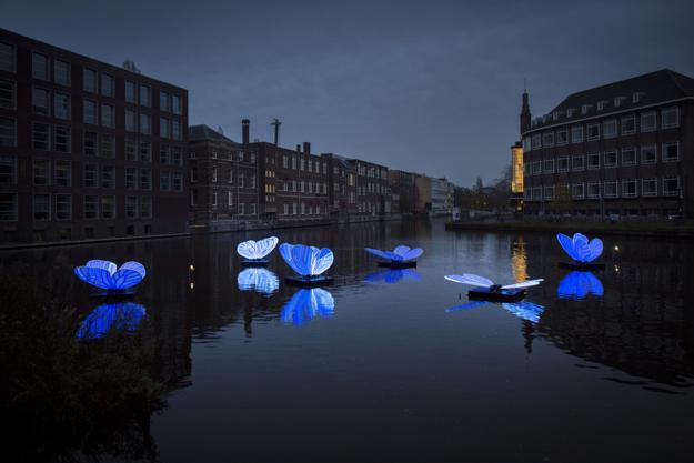 butterflies lights