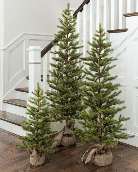 Multiple Holiday Tree Arrangements Modern Christmas Decor Trends