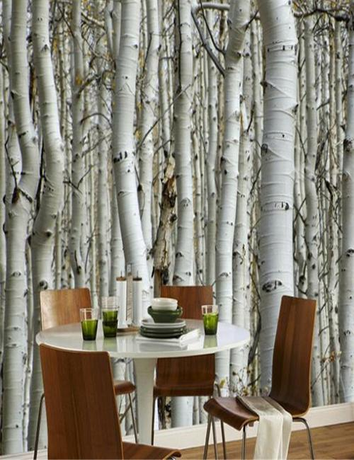 dining room birch trees mural