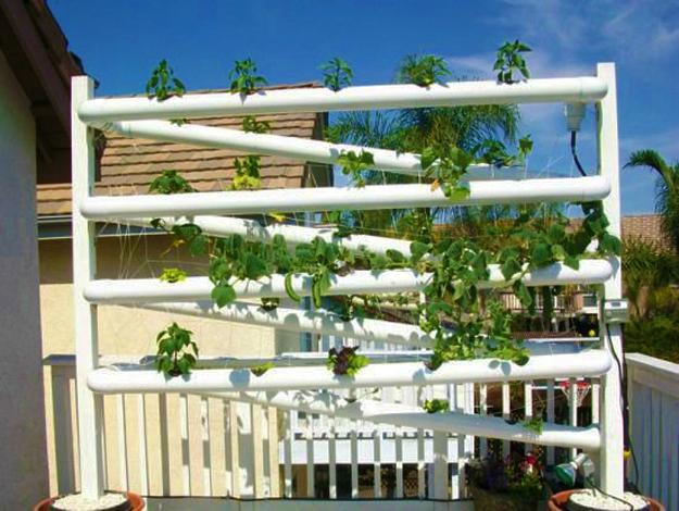 Creative Backyard Ideas Plastic Pipe Greenhouses And