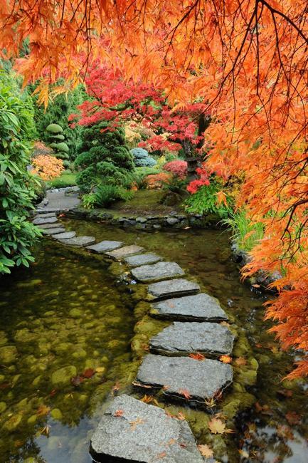 autumn backyard landscaping