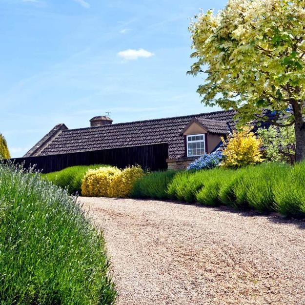 residential driveway landscape design